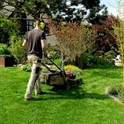 entretien de jardins et tonte de pelouses